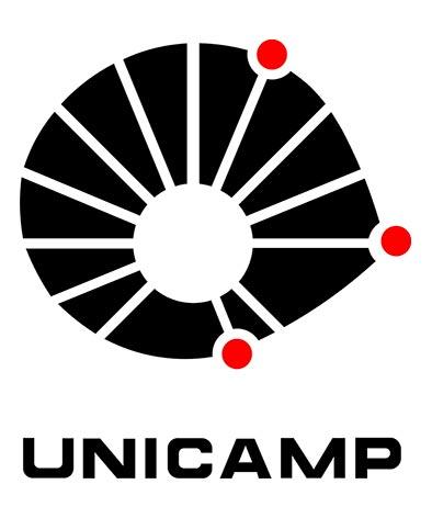 UNICAMP - Universidade de Campinas